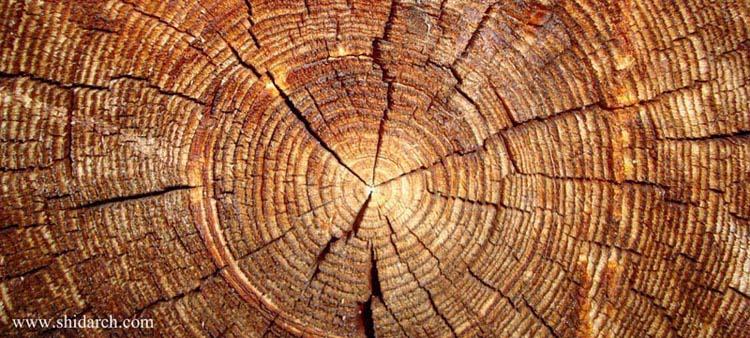 parquet shidarch 8 - پارکت چوبی چیست؟